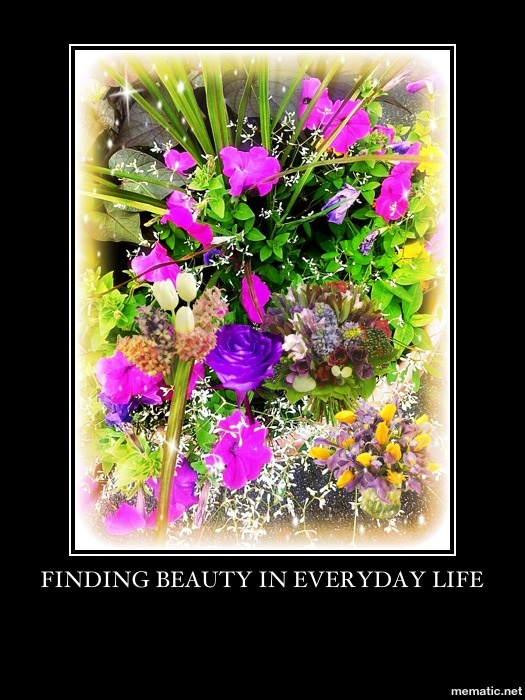 Finding Beauty in Everyday Life by cheerbear11