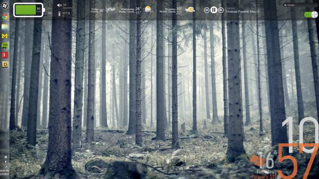 Win7 Screenshot January 2