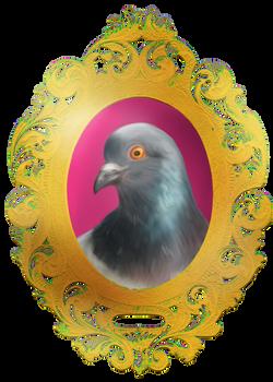 Pigeon custom shirt design