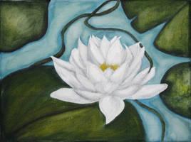 water lily by BetinaDanailova