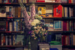 The Shakespeare and Co. Bookstore by shokoshock