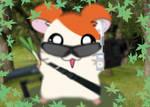 Hamtaro is here OwO