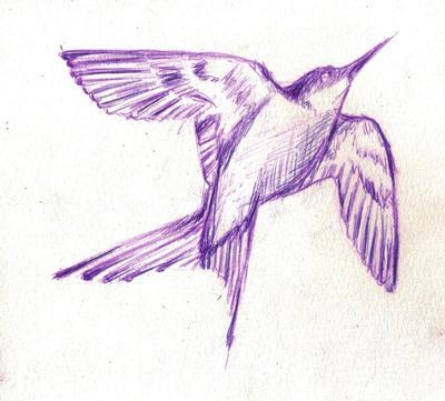 Bird flying high by ShinnyShy