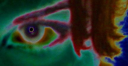 eye see you by skinnyfeet