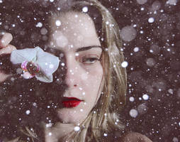 There's only snow left in my heart by ConceptualMiracles