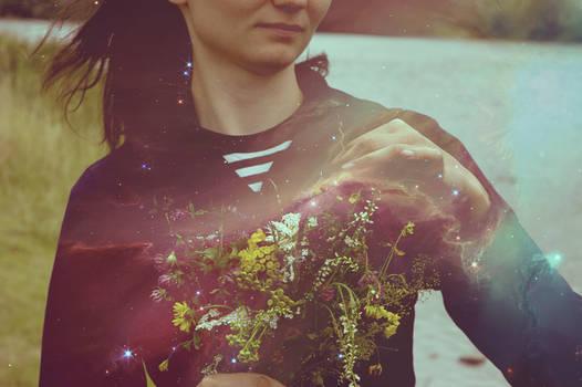 nebula flowers