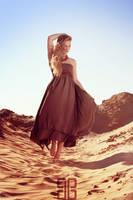 Desert Roses II by d-beckmann