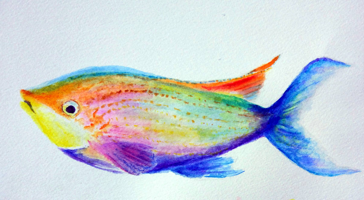 A Very Colourful Fish by Lotus105