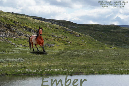 Ember :: This Life isn't a Fairy Tale