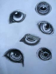 Animal Eyes by dolugecat