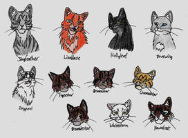 A Bunch of Warrior Cats by WolFkId27