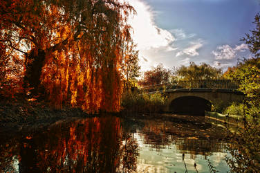 Regent Park in the fall by am-cross