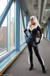 Black Cat: What's New Pussy Cat?