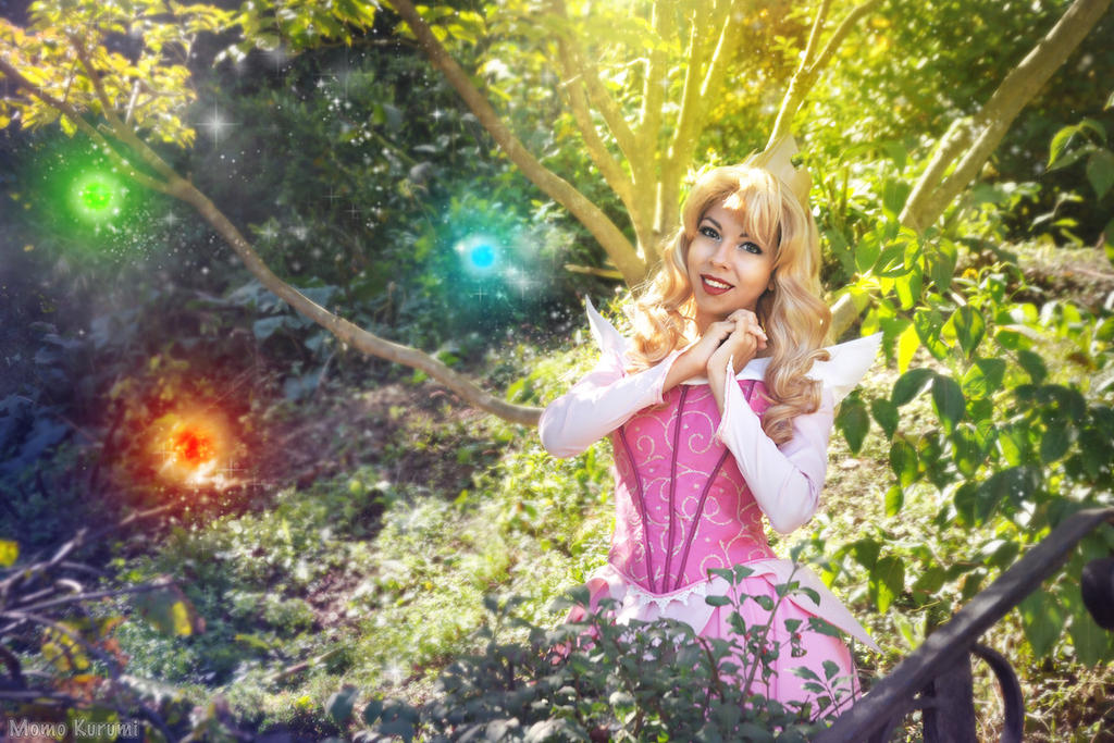 Aurora: Three Good Fairies by MomoKurumi
