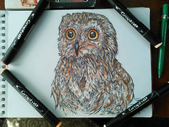 Cute Owl by kawaiiusagi23
