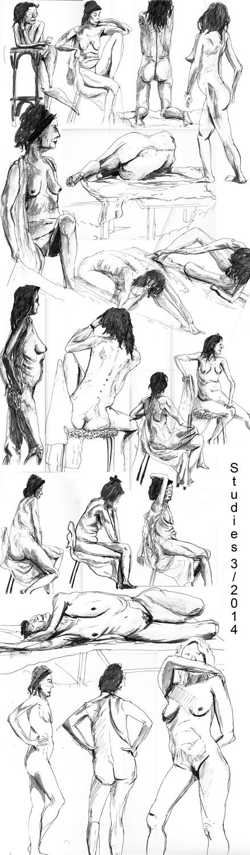 Life studies '14 by Kamikaye
