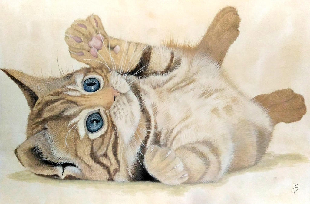 Cat Cub - Watercolor by FerrerasBS