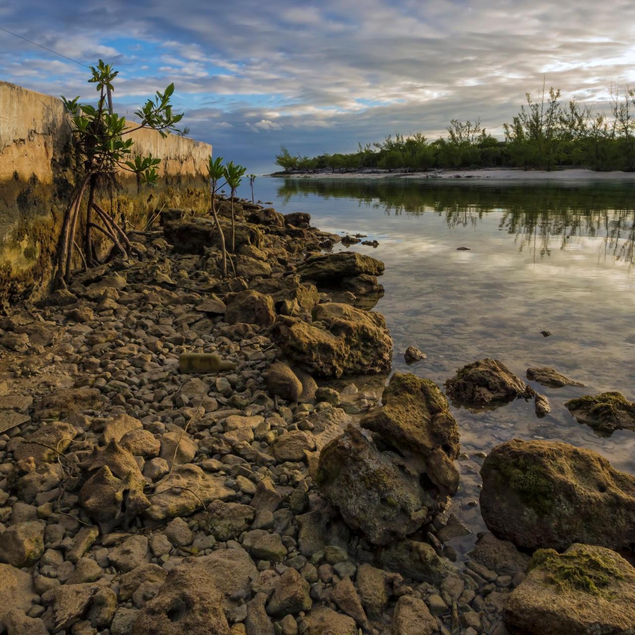 Up the creek by peterpateman