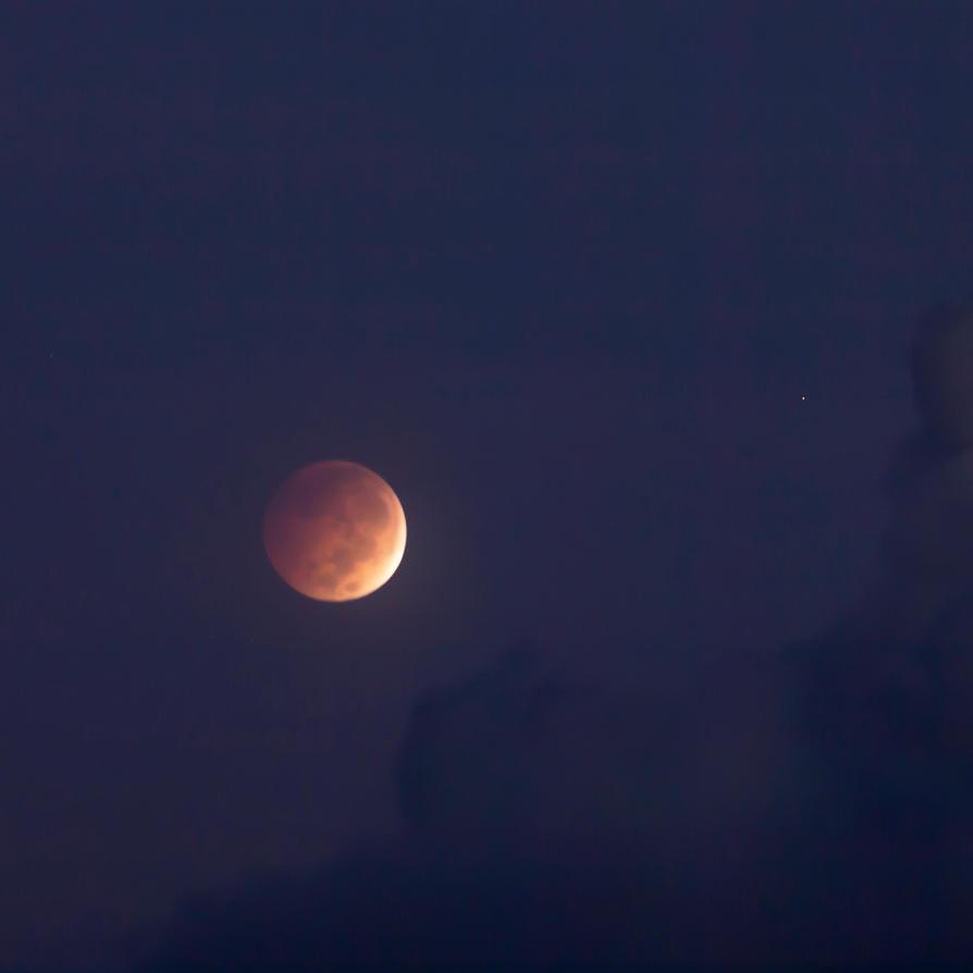 Lunar Eclipse Wednesday Morning. by peterpateman