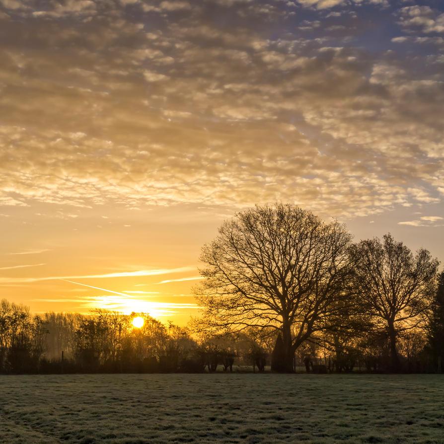 Frosty sunrise by peterpateman