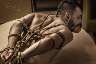 pigling by TalisinArtworkx