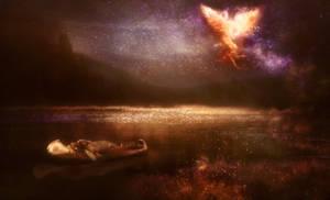 Nightbird's Dream