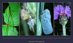 Covert Creatures