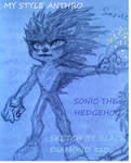Sonic the hedgehog- my style