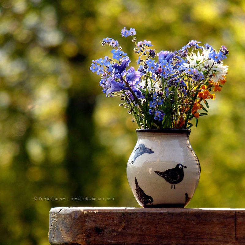 Blackbirds and Wildflowers by FreyaPhotos