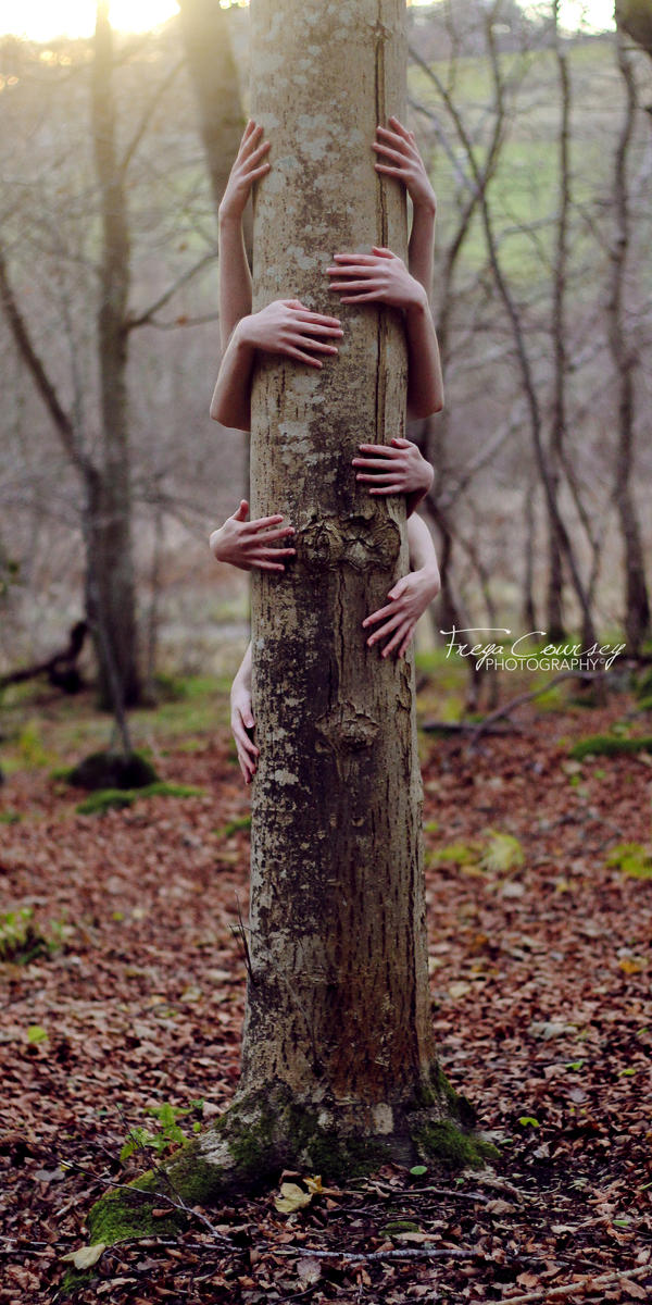 Tree Hugger by FreyaPhotos