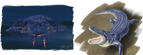 Gator Sketches by RRoehrig35