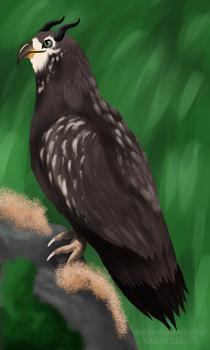 Art for Chrysalism, Eagle