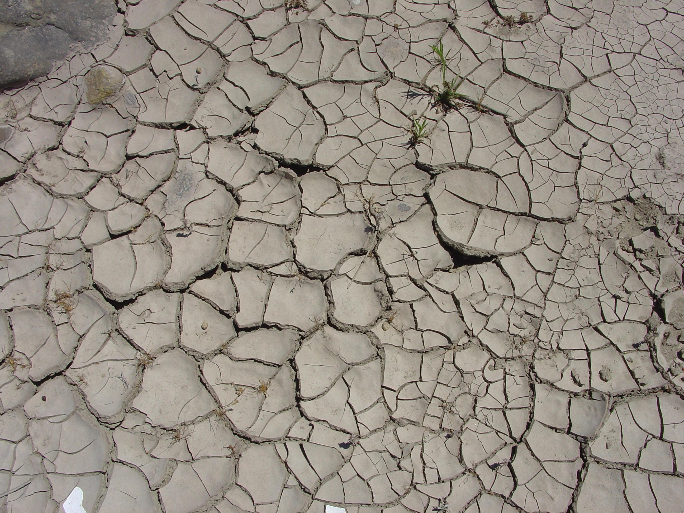 Ceiteach cracked earth 003 by ceiteach