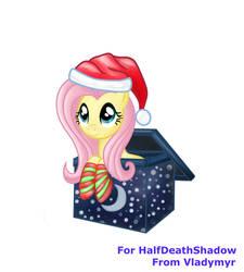 Fluttershy present for HalfDeathShadow