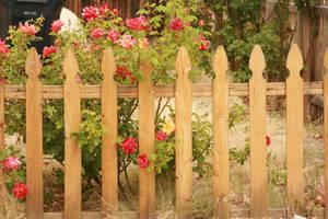 Picket Fence Long by DawnAllynnStock