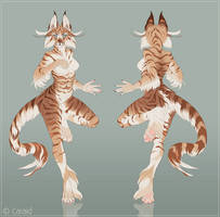 Feline Character Design