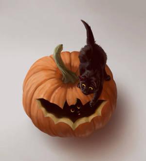 Pumpkin Blep