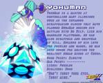 YokuMan Data Card
