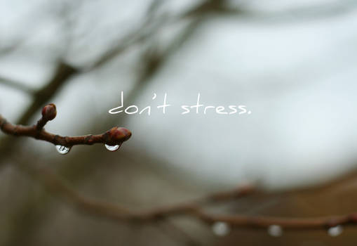 wallpaper - don't stress