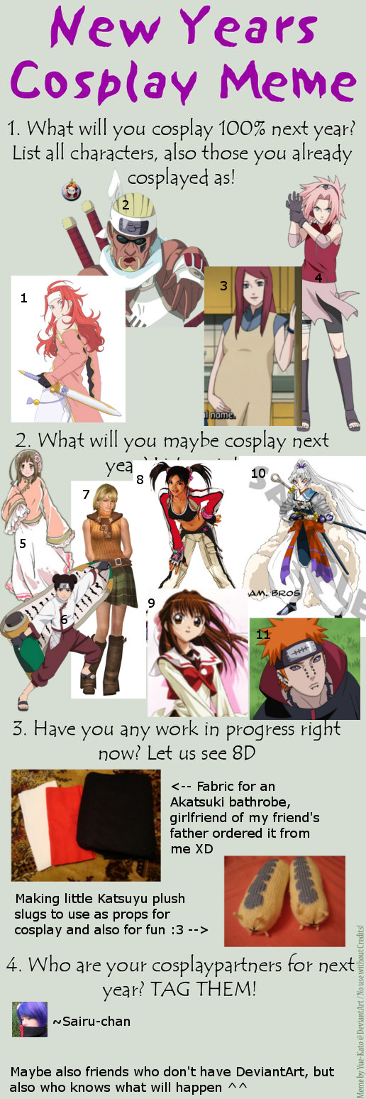 New Years Cosplay Meme 2013 by CissyDella