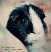 My little boy, my little world by M-Twins
