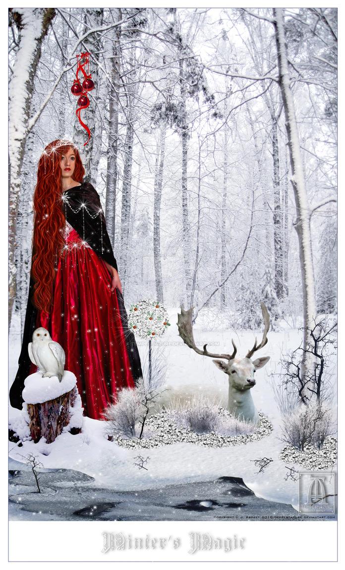 Winter's Magic by Tempestazure