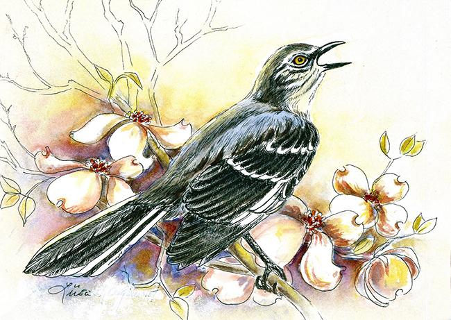 Mockingbird by happytimer