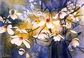 Burst of Flowers by happytimer