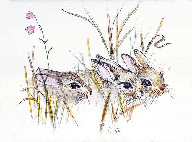 Rabbit Family by happytimer
