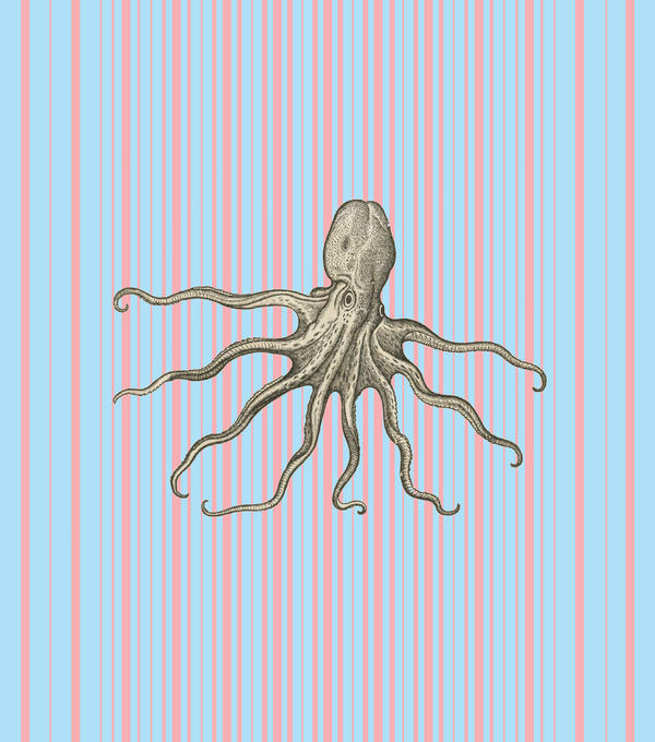 Octopus 1 by motion-suggests