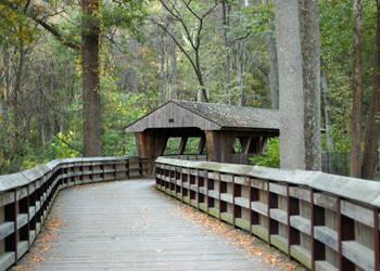 Covered Bridge by inkydee