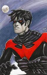 Nightwing! by olybear