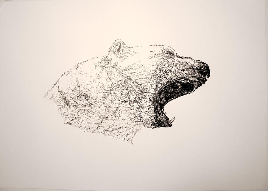 The Polar Bear by RebelRuby