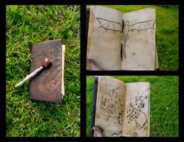 Hiccup's Sketchbook by Pinkiebel